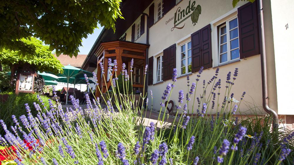 Gasthaus Linde in Hofstetten