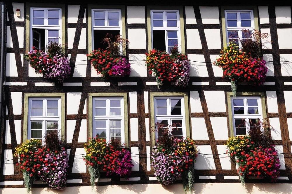 Blumenpracht in Hausach