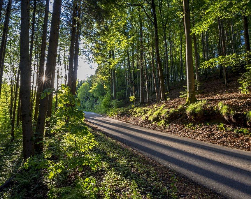 Bei Sankt Roman, Wolfach im Kinzigtal, Schwarzwald