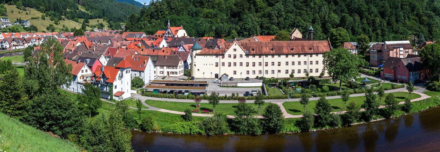 Wolfach Altstadt Schloss Fürstenberg Kinzigtal