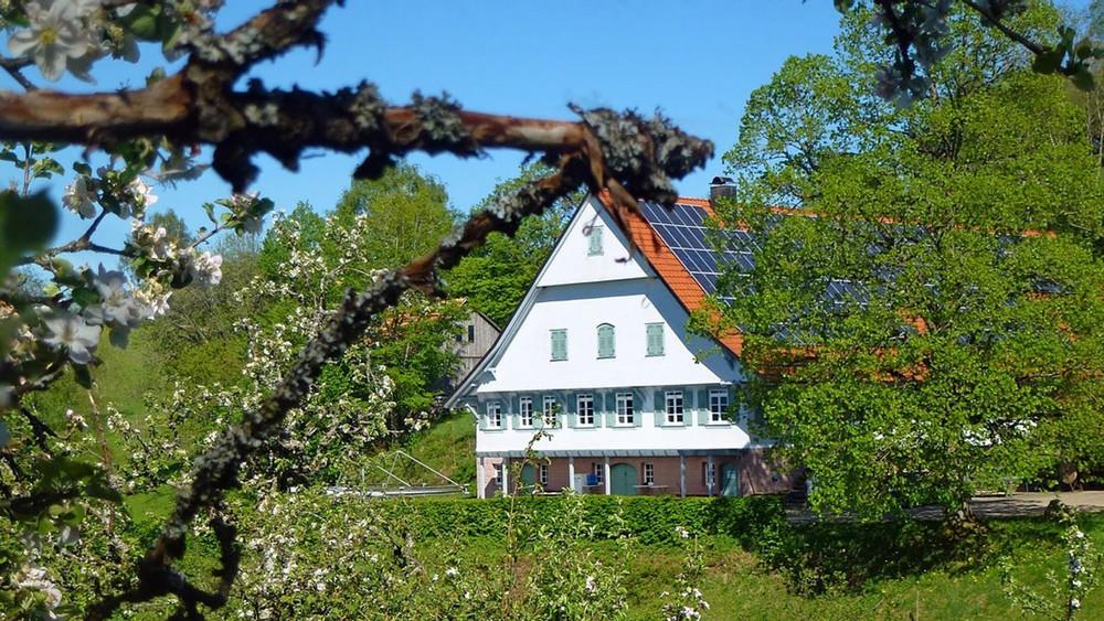 Schwarzwaldferienhof Schornhof Wolfach im Kinzigtal
