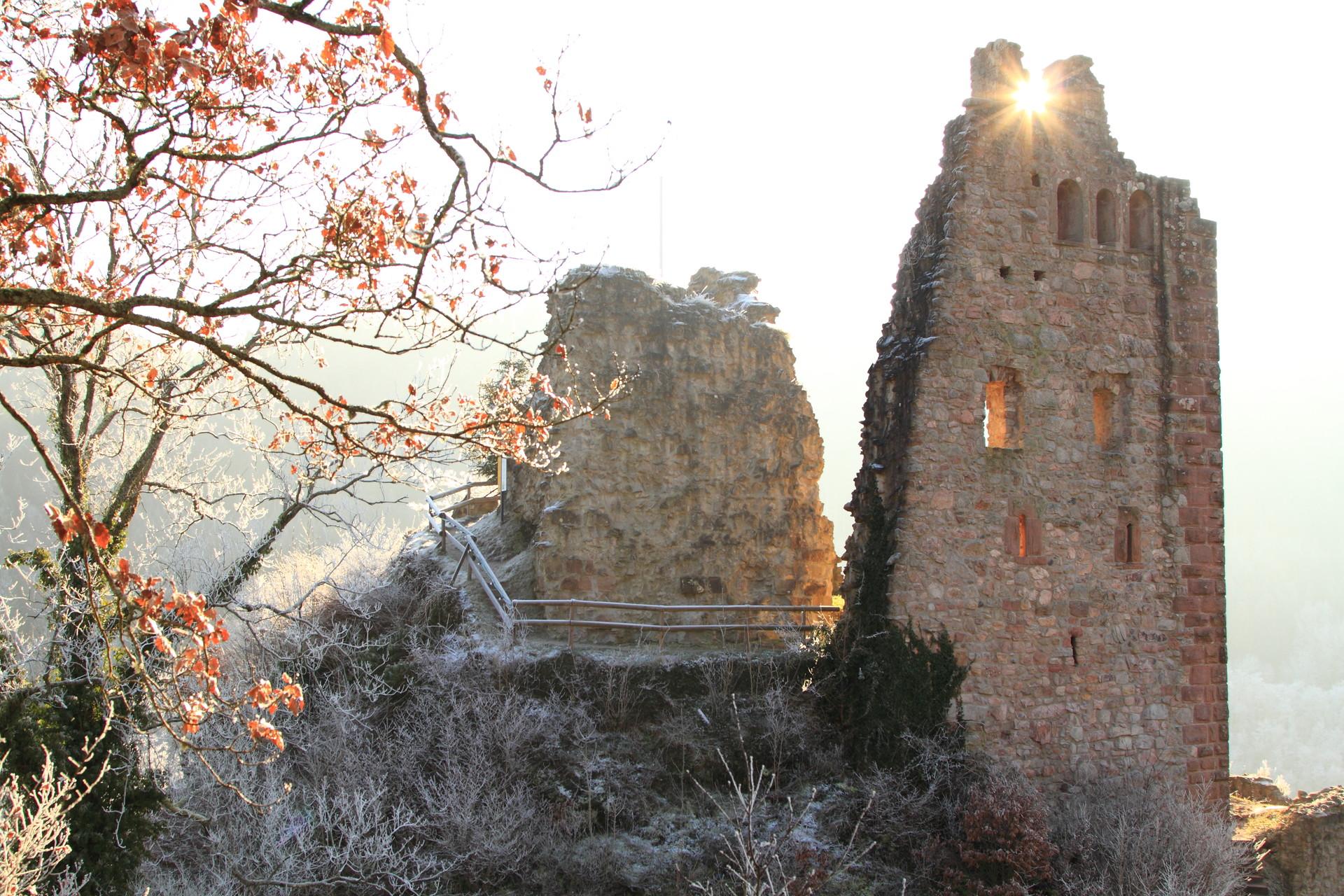 Burgruine Schenkenburg in Schenkenzell Kinzigtal