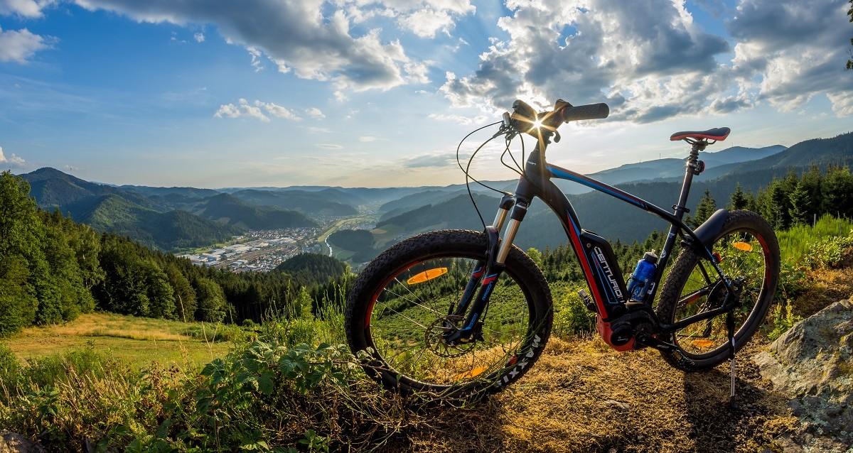 Auf dem Spitzfelsen bei Wolfach im Kinzigtal, Schwarzwald