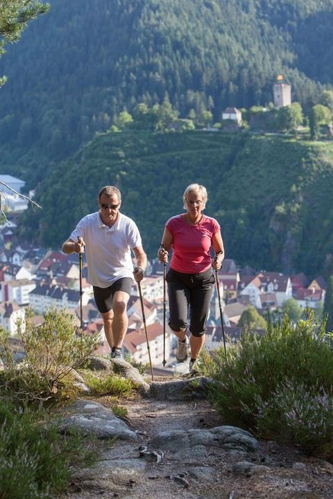Nordic Walking in Gutach im Kinzigtal