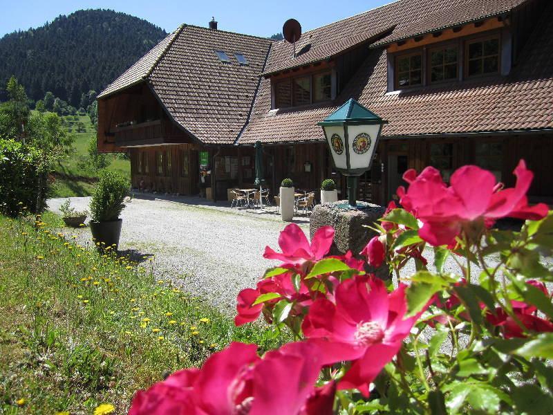 Campingplatz Trendcamping in Halbmeil bei Wolfach im Kinzigtal, Schwarzwald