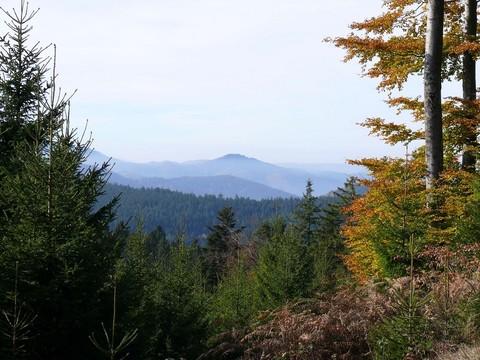 Panorama-Rundweg in Sankt Roman bei Wolfach im Kinzigtal, Schwarzwald