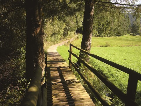 Lauterbach-Steg im Rotwasser
